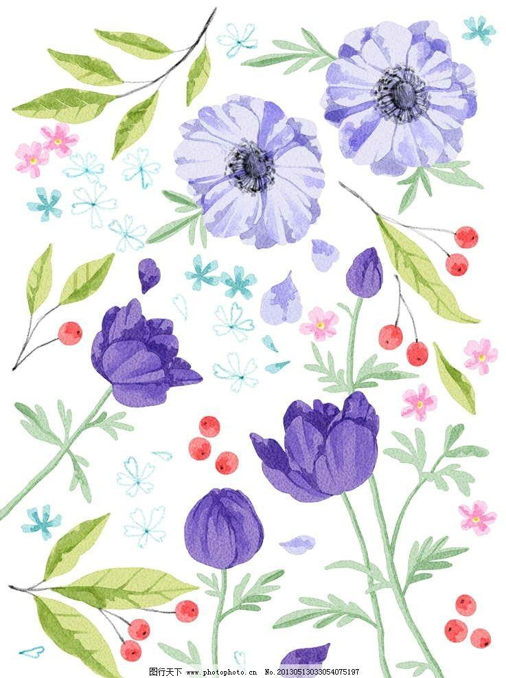 紫罗兰 绿叶 绿植 花草 鲜花 花朵 花瓣 繁花 百花盛开 牡丹花 盛开