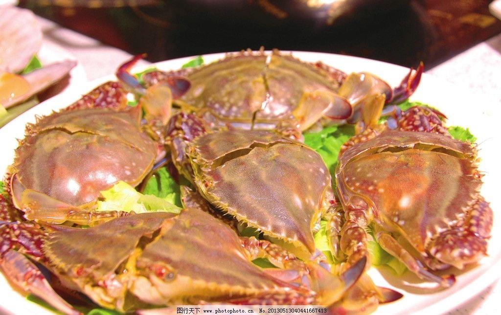 螃蟹 海蟹 食材 蜘蛛蟹 海鲜 海产品 海洋生物 节肢动物 食物原料