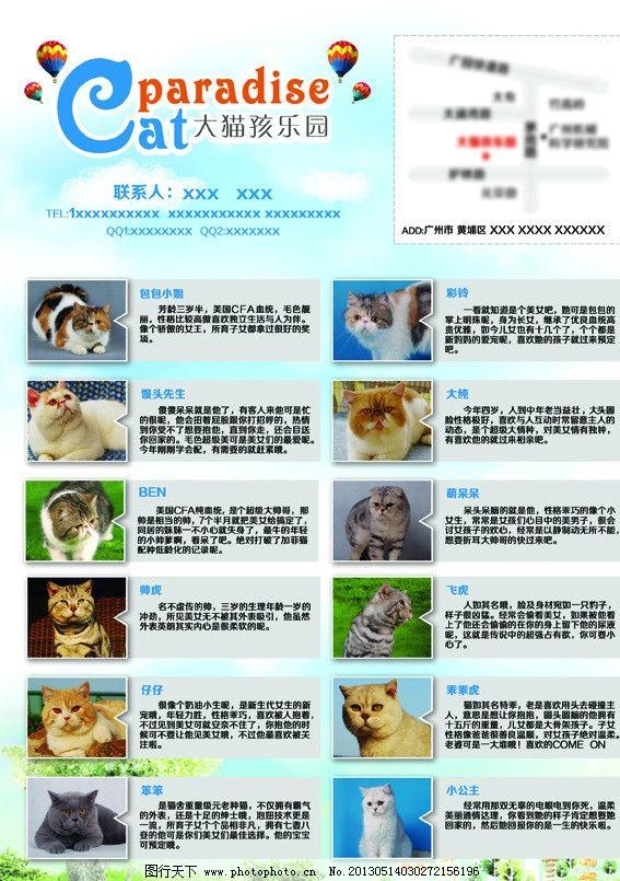宠物店宣传单张图片