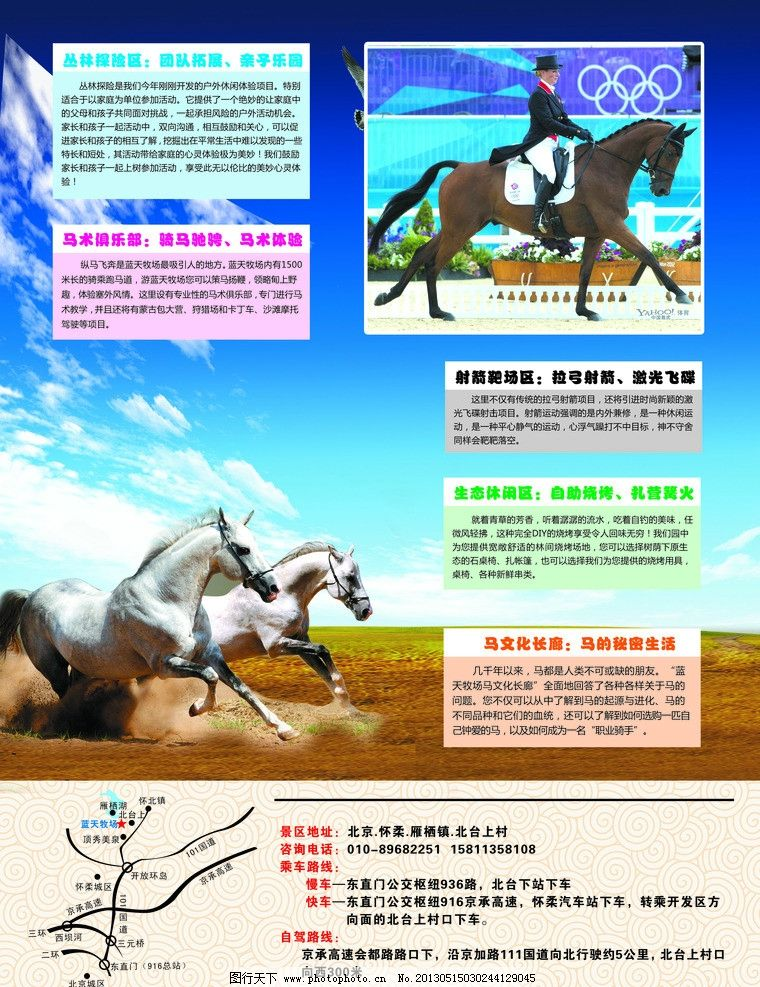 马宣传页 马 宣传页 马术 马场 dm宣传单 广告设计模板 源文件 300dpi