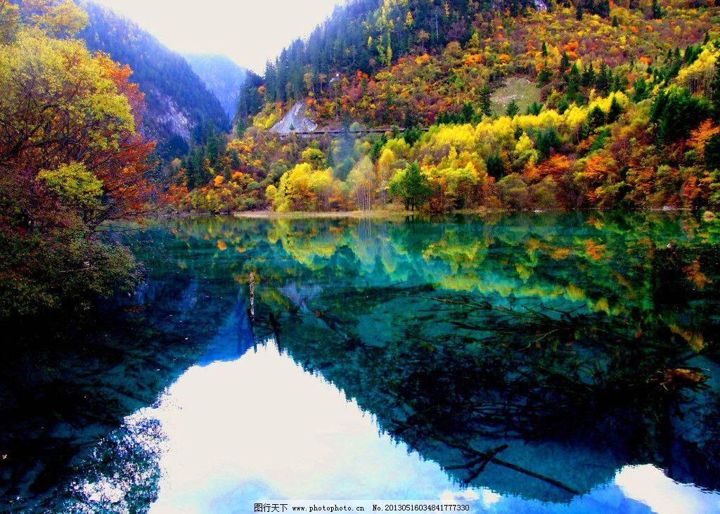 九寨沟 湖水 森林 青山绿水 树林 秋天 森林公园 四川 生态公园