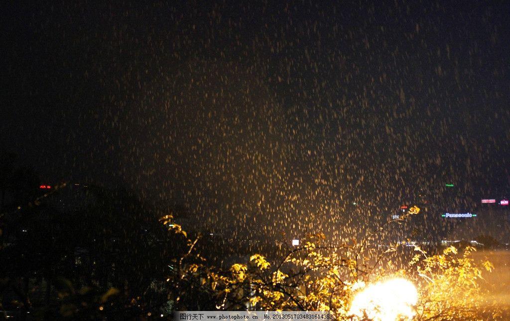 雨天 夜晚 下雨 树木 灯光 树枝 自然风景 自然景观 摄影 72dpi jpg