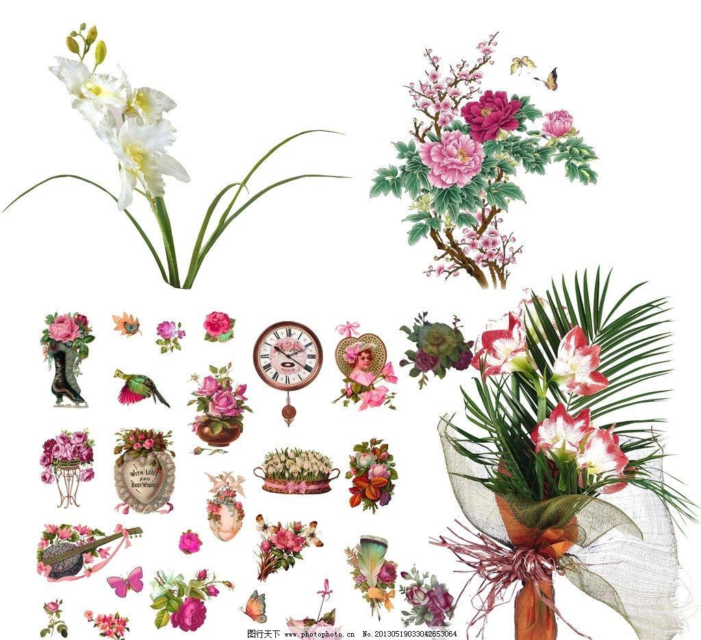 一组欧式鲜花图片