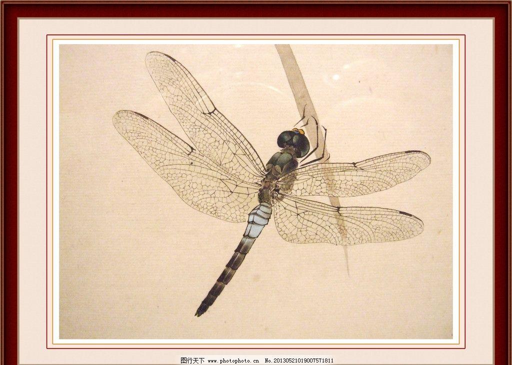 蜻蜓 工笔画图片
