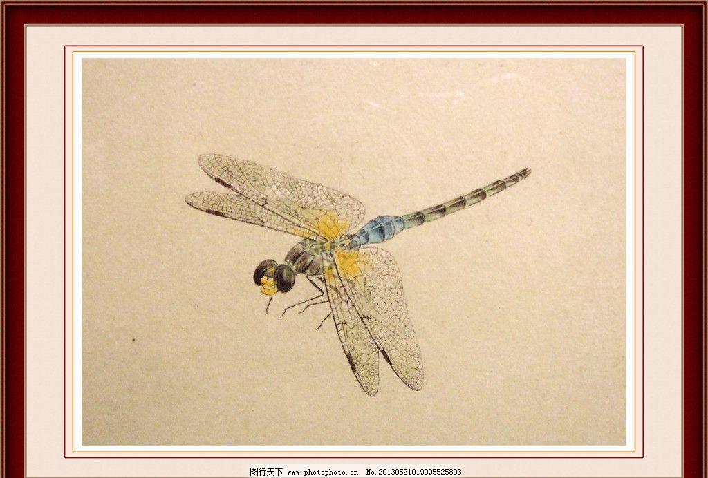 蜻蜓工笔画图片