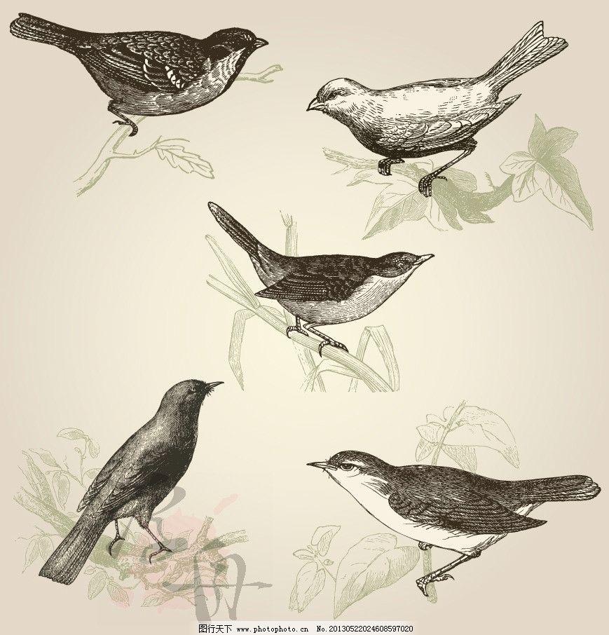 燕子小鸟的简笔画