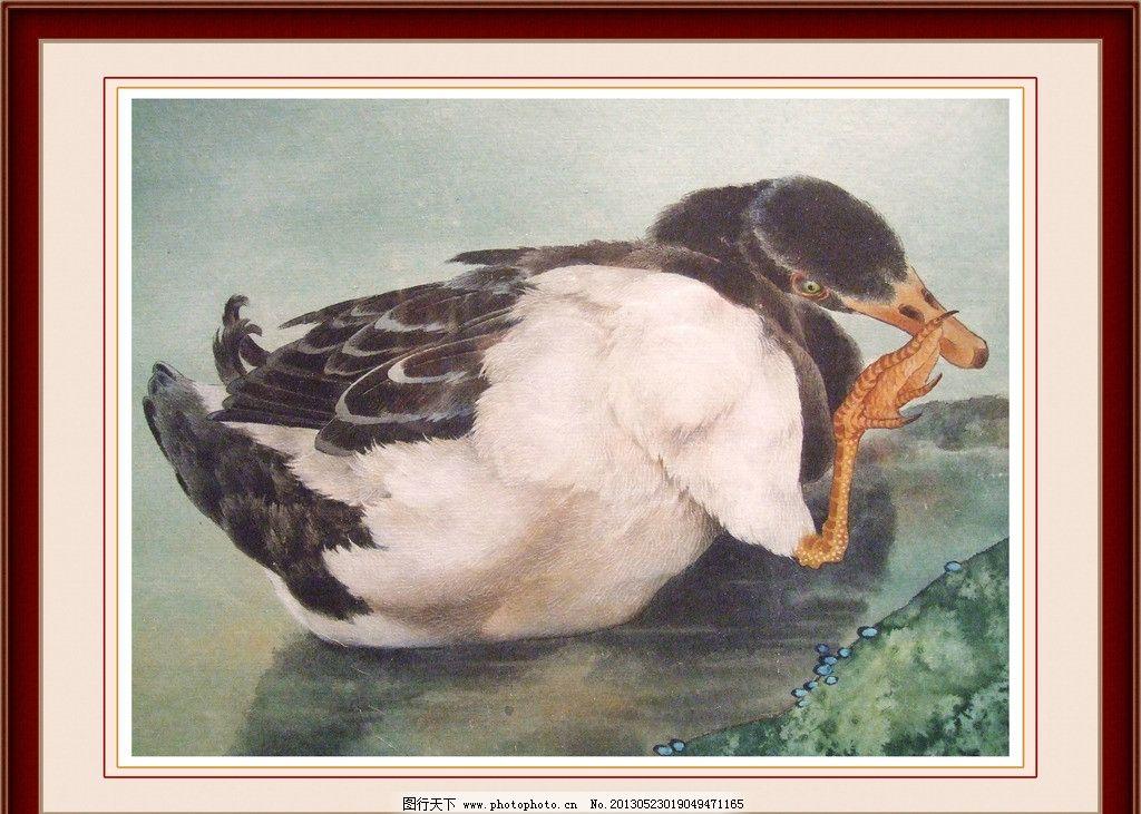 鸭子工笔画图片