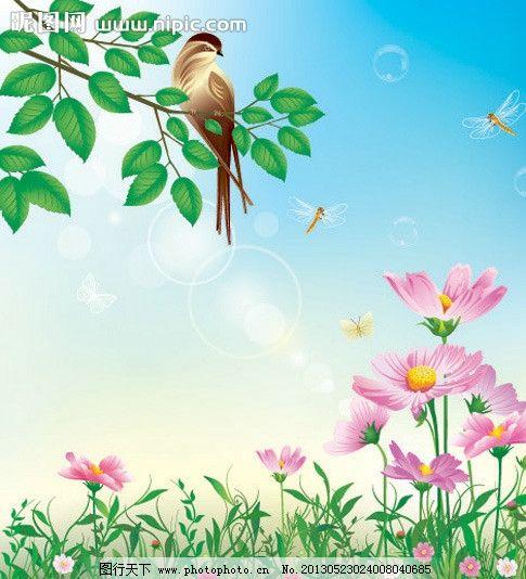 夏天花卉花朵背景图片