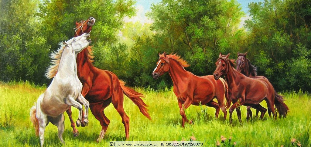 奔跑 草原 草地 森林