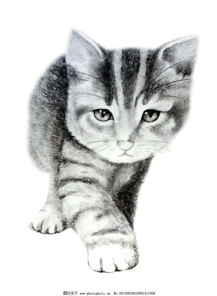素描 猫 动物 设计 美术 艺术 绘画书法 文化艺术 300dpi jpg