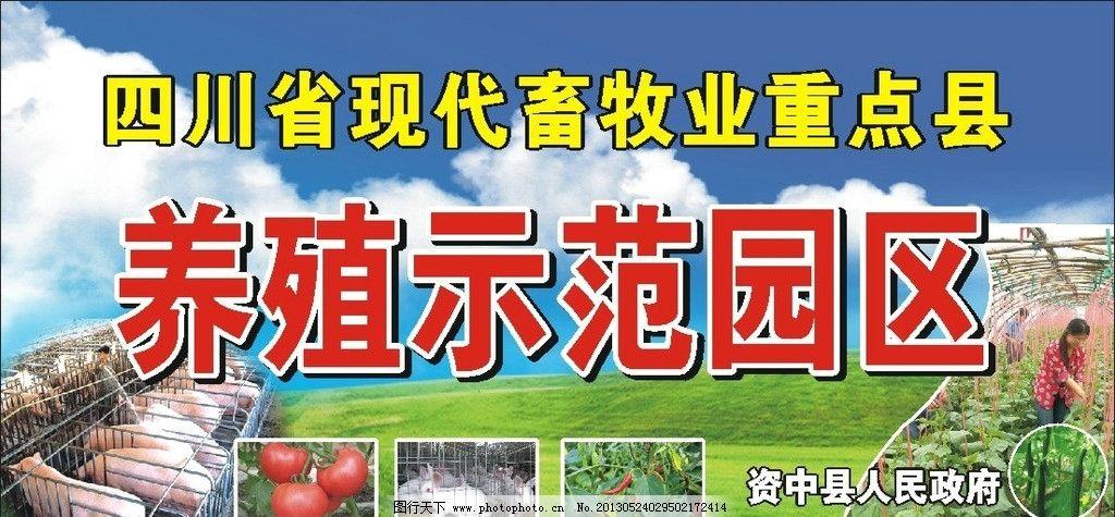 养殖示范园区 肥猪 西红柿 蔬菜 蓝天 白云 草地 广告设计 矢量