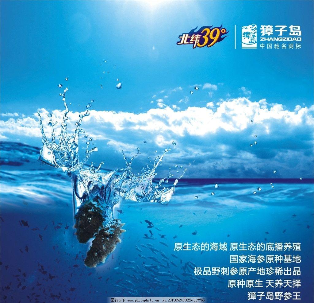 獐子岛海参落水图片