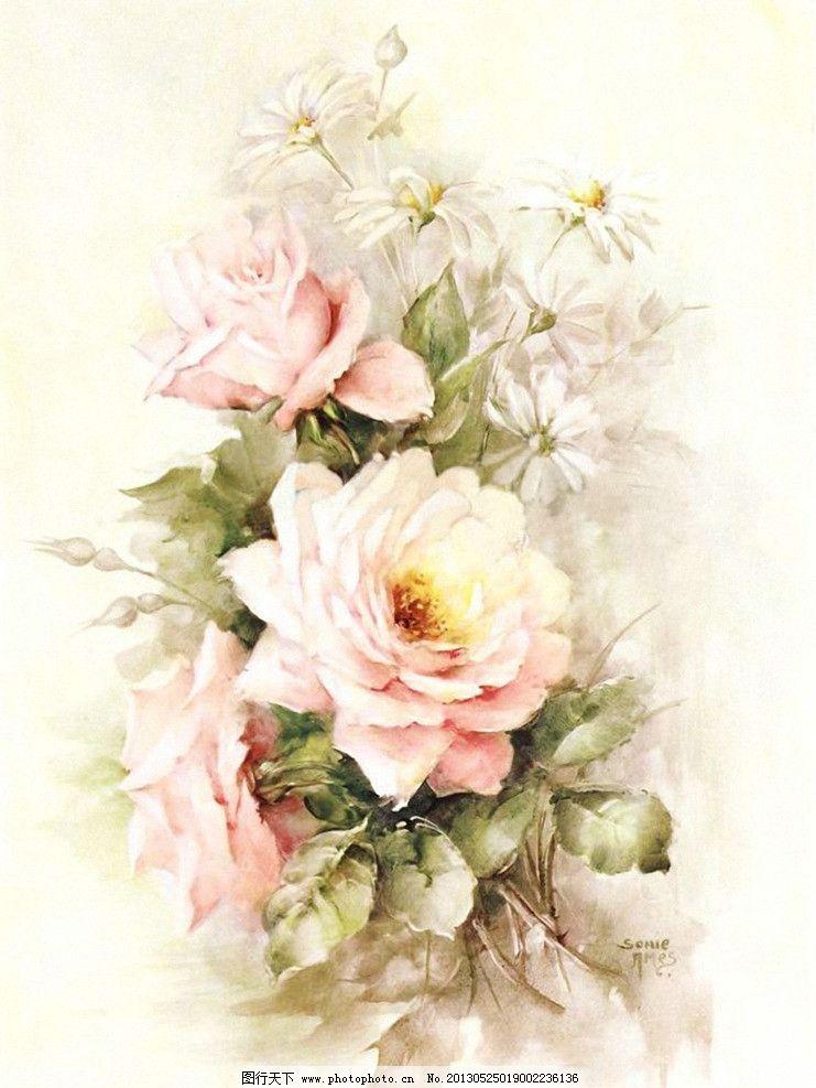 玫瑰花设计素材 玫瑰花模板下载 玫瑰花 手绘花卉 手绘花朵 月季花 花
