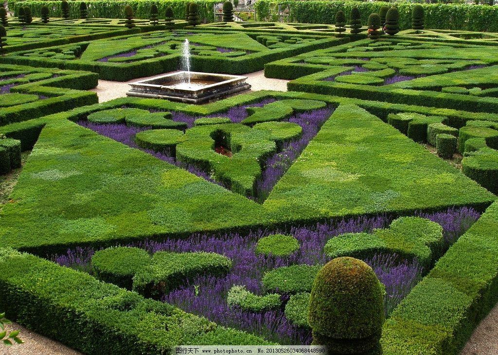 法式园林 绿化 薰衣草 几何图形 迷宫 景观设计 国外旅游 摄影图片图片