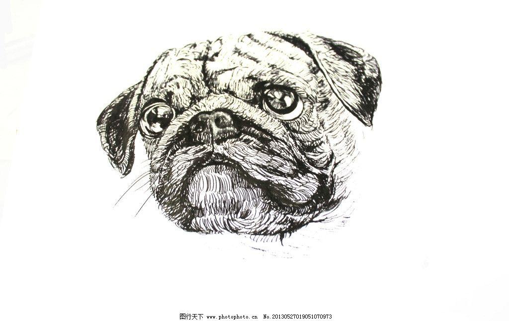 狗狗 大眼睛 可爱 皮 萌 手绘 绘画书法 文化艺术 设计 72dpi jpg