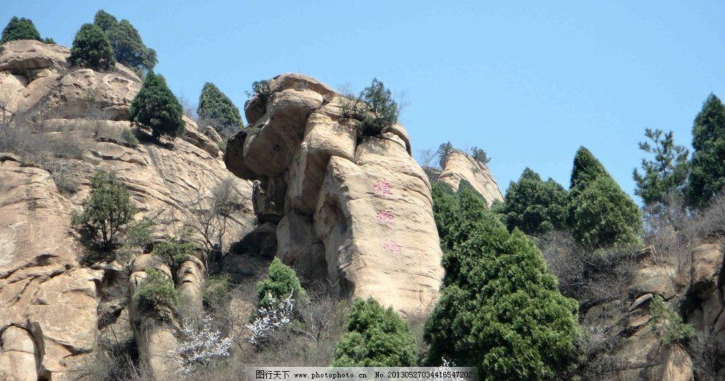 山石 白色 山谷 松树 蓝天 山水风景 自然景观 摄影 72dpi jpg