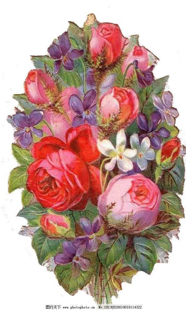 手绘玫瑰花 手绘红色玫瑰花 手绘粉色玫瑰花 手绘花朵 复古花朵 玫瑰