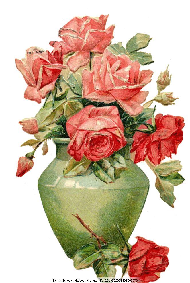 粉色玫瑰花 红色玫瑰花 复古粉色玫瑰花 复古红色玫瑰花 手绘玫瑰花
