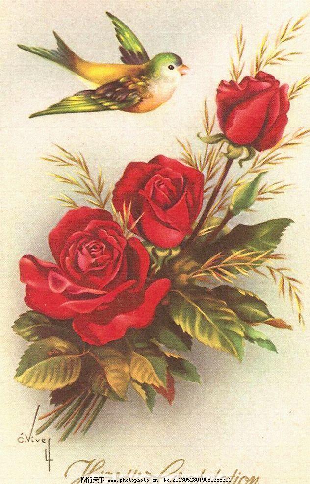 复古玫瑰花图片_绘画书法_文化艺术_图行天下图库