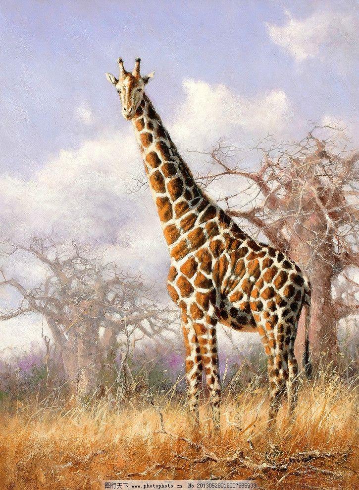 非洲草原的长颈鹿 美术 油画 动物画 野草 树木 油画艺术 绘画书法