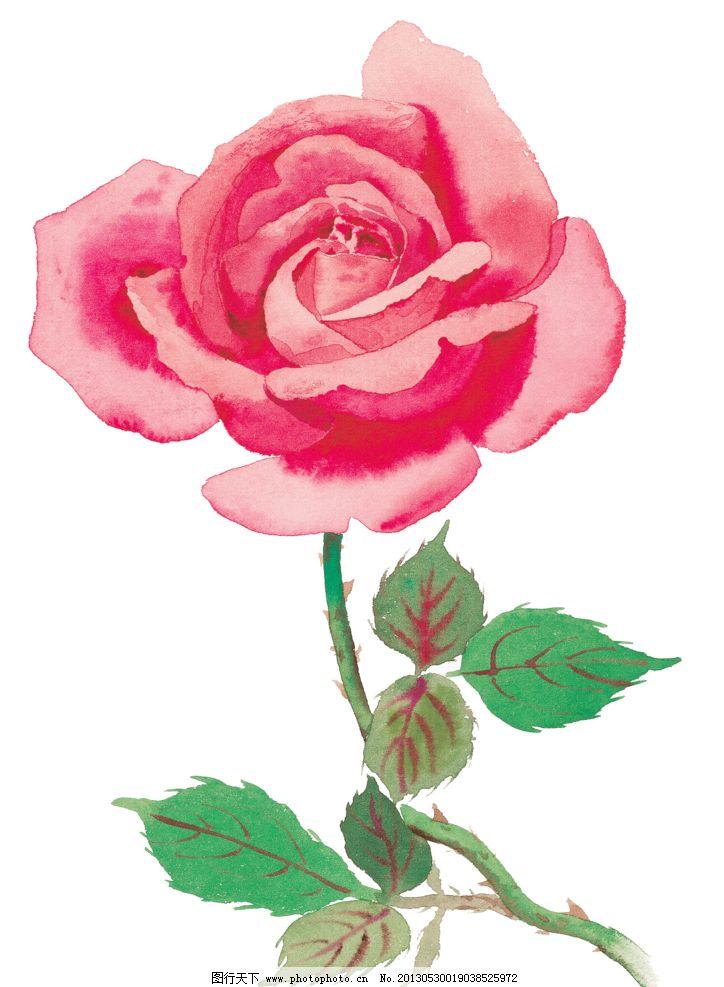 手绘红色玫瑰花图片_绘画书法_文化艺术_图行天下图库