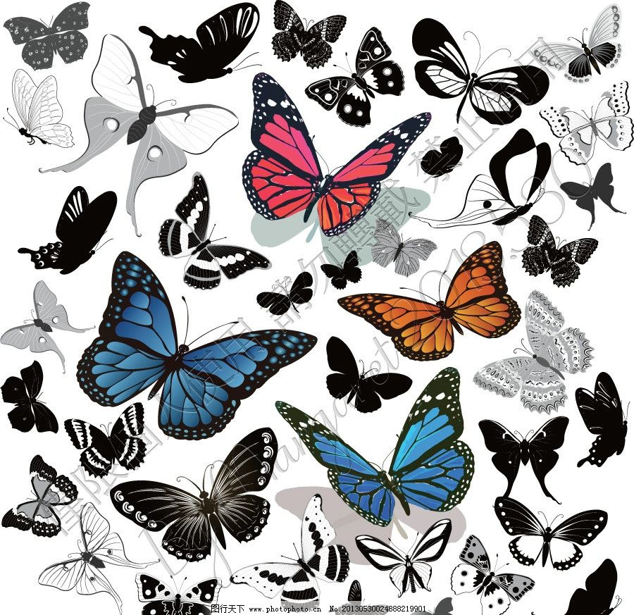 手绘蝴蝶大全 黑白 白描 手绘 线描 线稿 草稿 昆虫 素描 蝴蝶 菜粉蝶