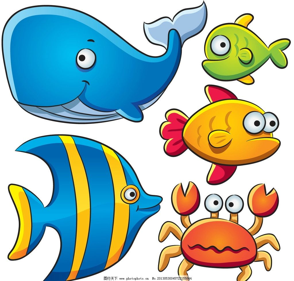 海洋生物 鱼 螃蟹 海星 龙虾 鲸 海洋 生物 生物世界 矢量 ai
