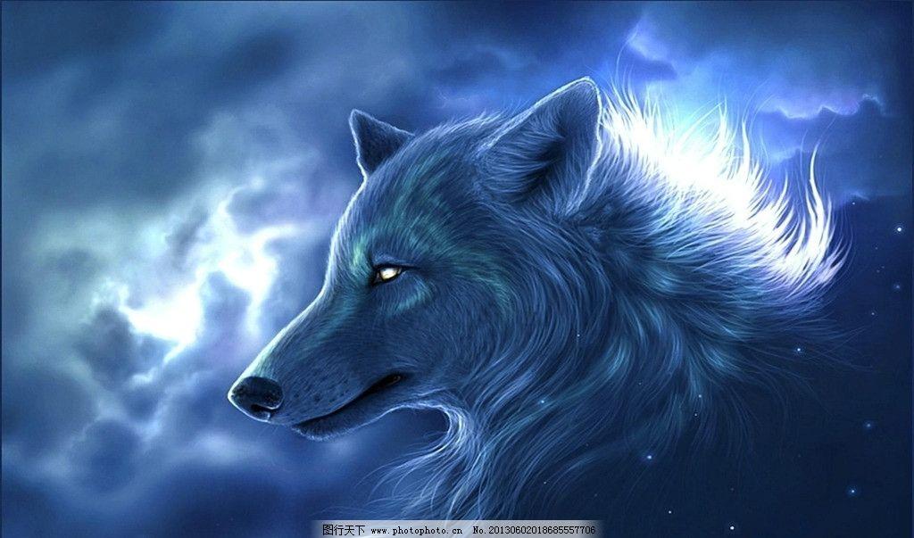手绘壁纸 狼图片