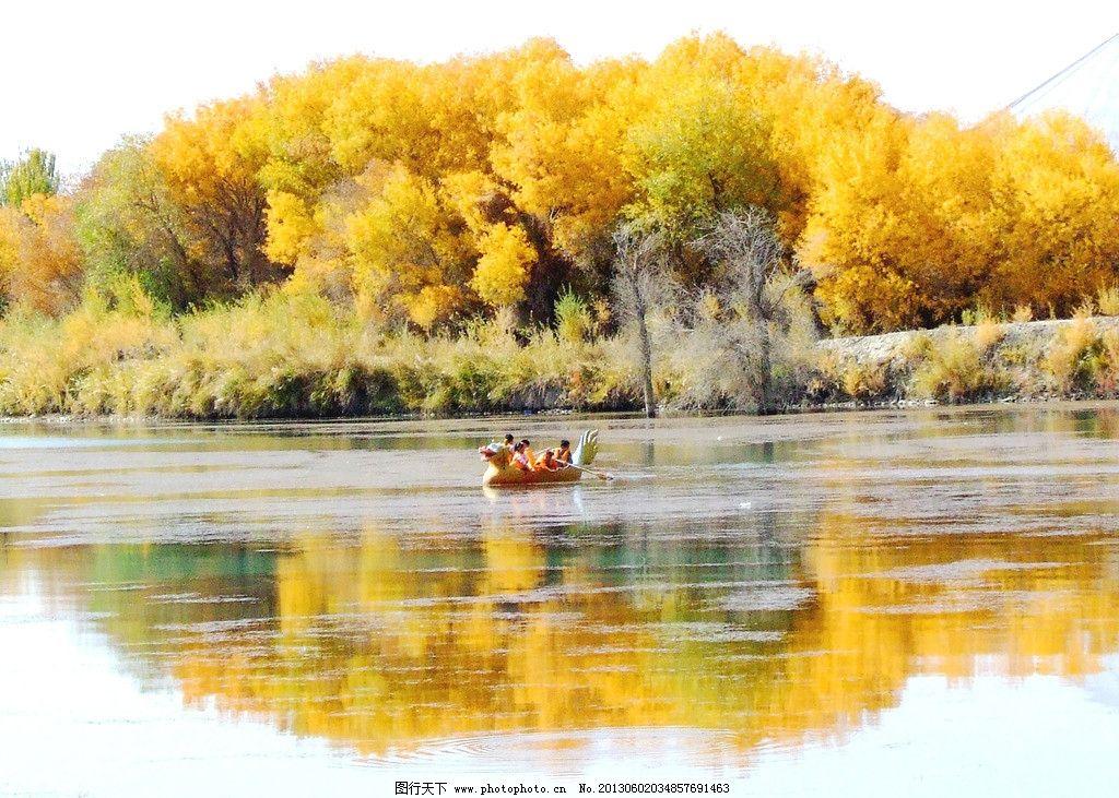 胡杨林 新疆风景 树湖 树木树叶 生物世界 摄影
