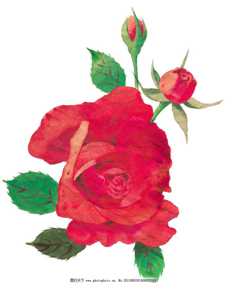 红色玫瑰花设计素材 红色玫瑰花模板下载 手绘花朵 复古玫瑰花 复古花