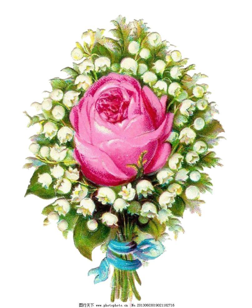 复古玫瑰花 手绘玫瑰花设计素材 手绘玫瑰花模板下载 手 手绘玫瑰花