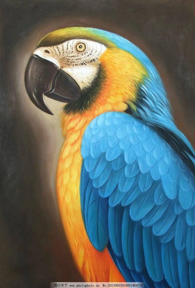 鹦鹉 油画 缤纷画室 写实油画