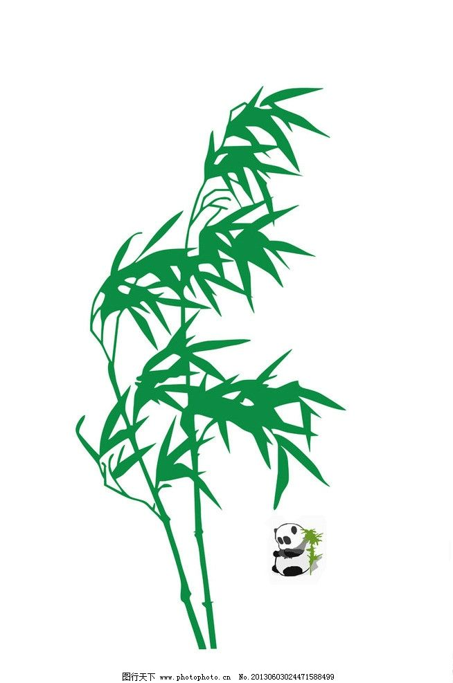 熊猫竹子图 熊猫和青色竹子 熊猫 竹子 青色 黑色 野生动物 生物世界