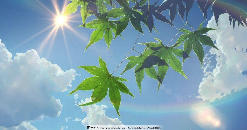 动漫风景 蓝天 白云 阳光 绿叶 树叶 彩虹 言叶之庭 新海诚