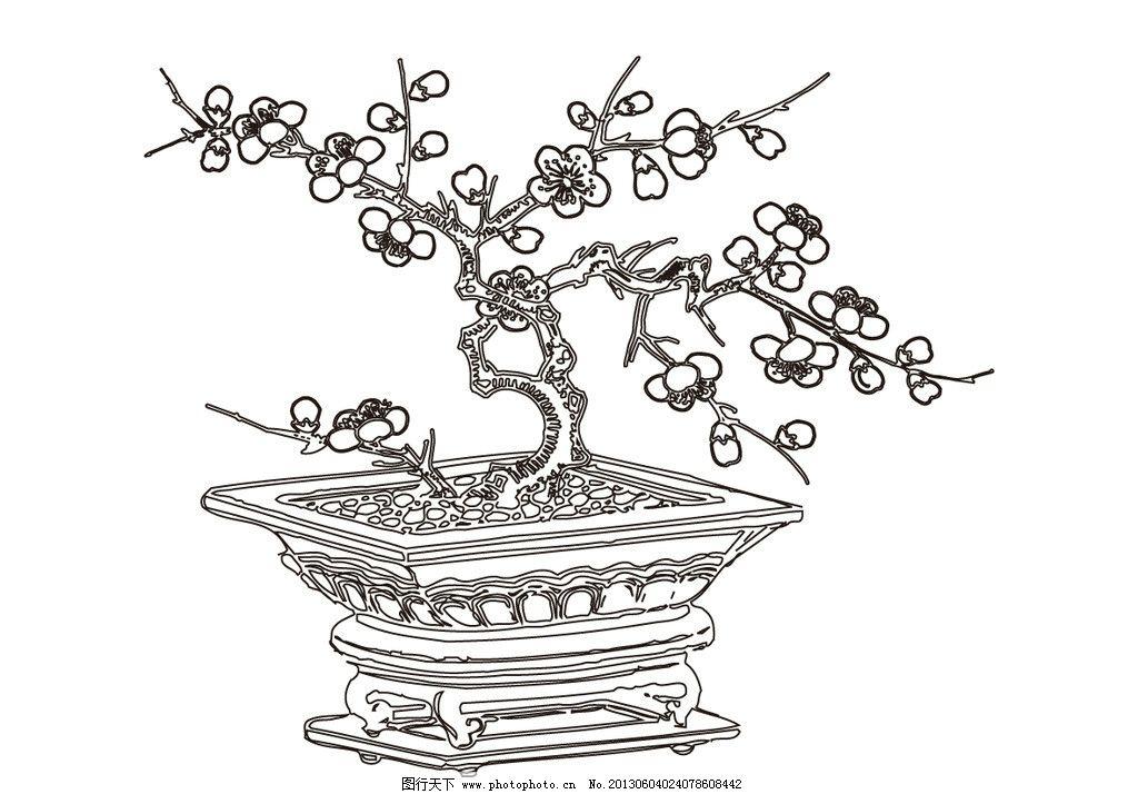 盆景梅花图片