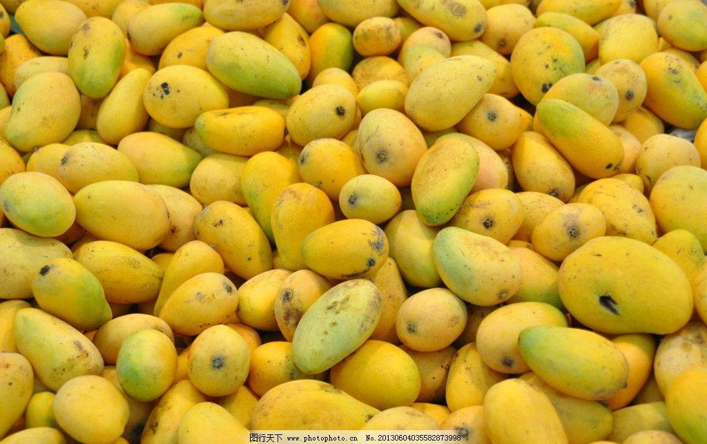 水果 大芒果 小芒果 黄色芒果 青色芒果 长芒果 生物世界 摄影 300dpi