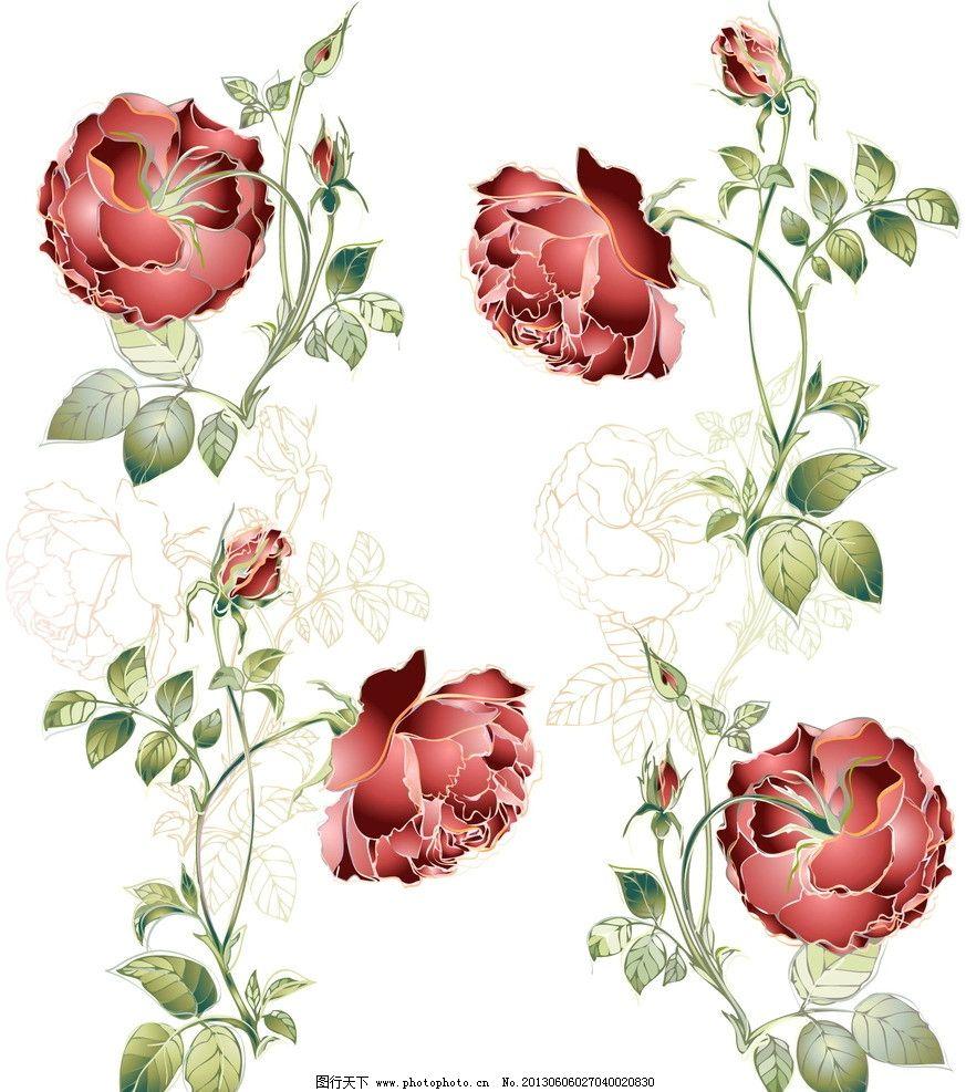 玫瑰 花朵 花卉 叶子 花纹 欧式 花卡 线条 贺卡 邀请 请柬 卡片 矢量