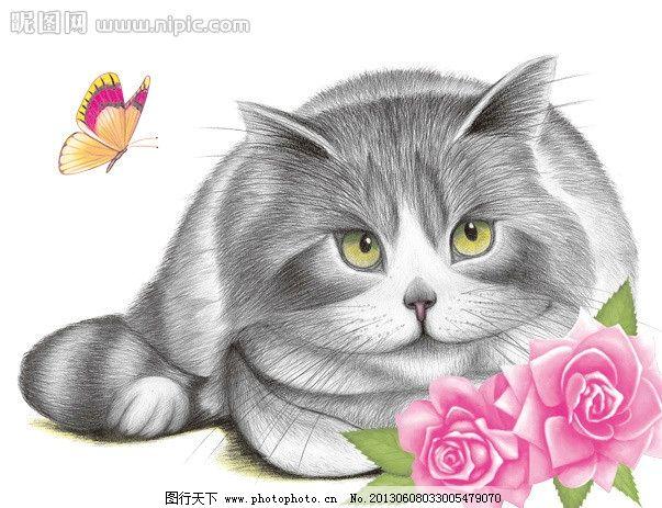 猫素描图图片