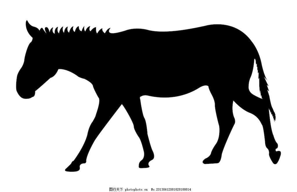 驴动物的形状