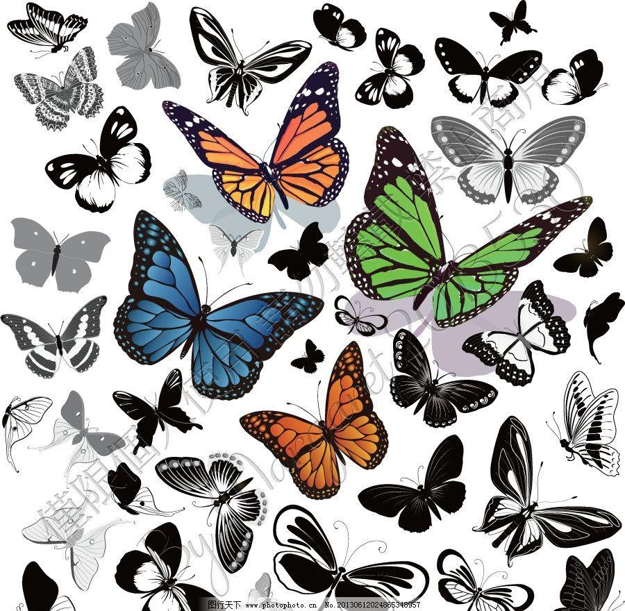 纷飞蝴蝶 黑白 白描 手绘 线描 线稿 草稿 昆虫 素描 蝴蝶 菜粉蝶