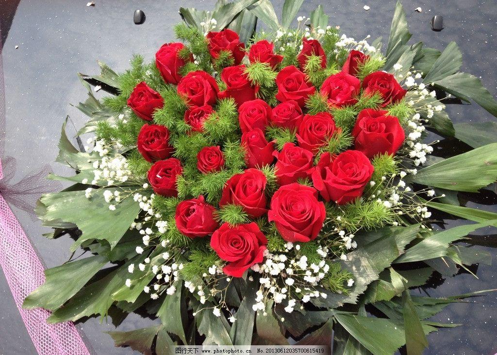 鲜花 花束 花朵 盛开 绽放 礼物 美丽 花瓣 梦幻 浪漫 花草 生物世界