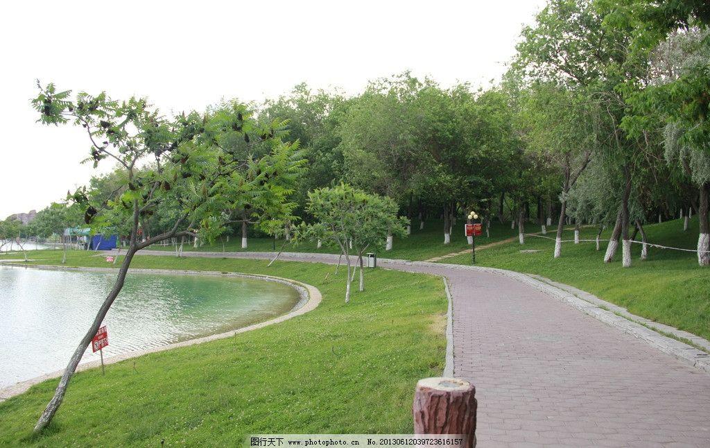 公园景观 湖水 人工湖 绿树 湖边 湖岸 树 水渠 公园 草坪树木 小路