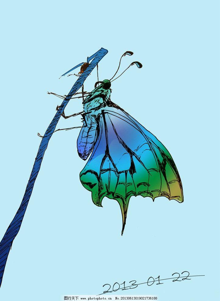 蝴蝶 插画 素材 时尚 手绘 彩色 绘画书法 文化艺术 设计 72dpi jpg