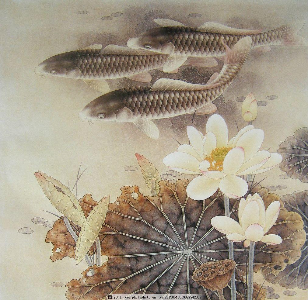 荷花鱼图片,鲤鱼 荷花鲤鱼图 工笔画 国画 写真图片