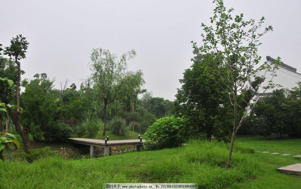 园林景观 植物 树木 古建筑 农村 村庄 杭州 湖 园林建筑 建筑园林