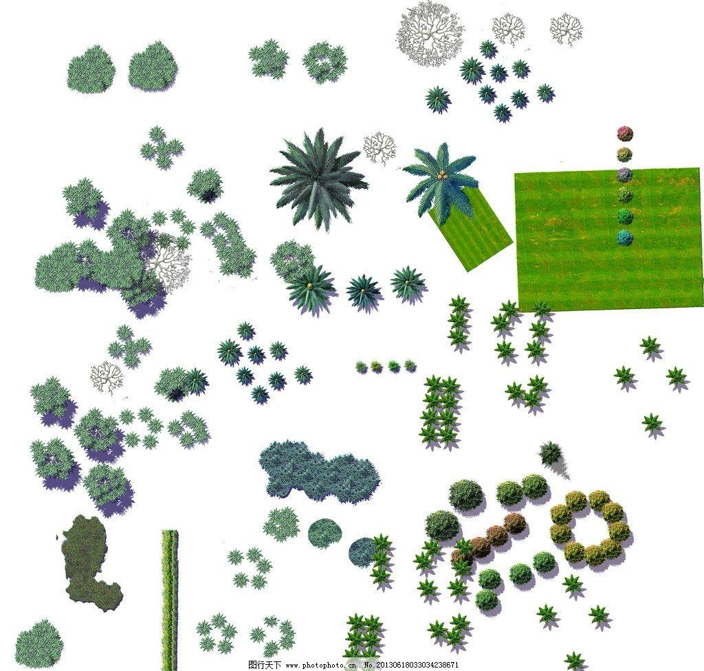 平面树 景观设计 园林 景观 彩平素材 psd分层素材 源文件 300dpi psd