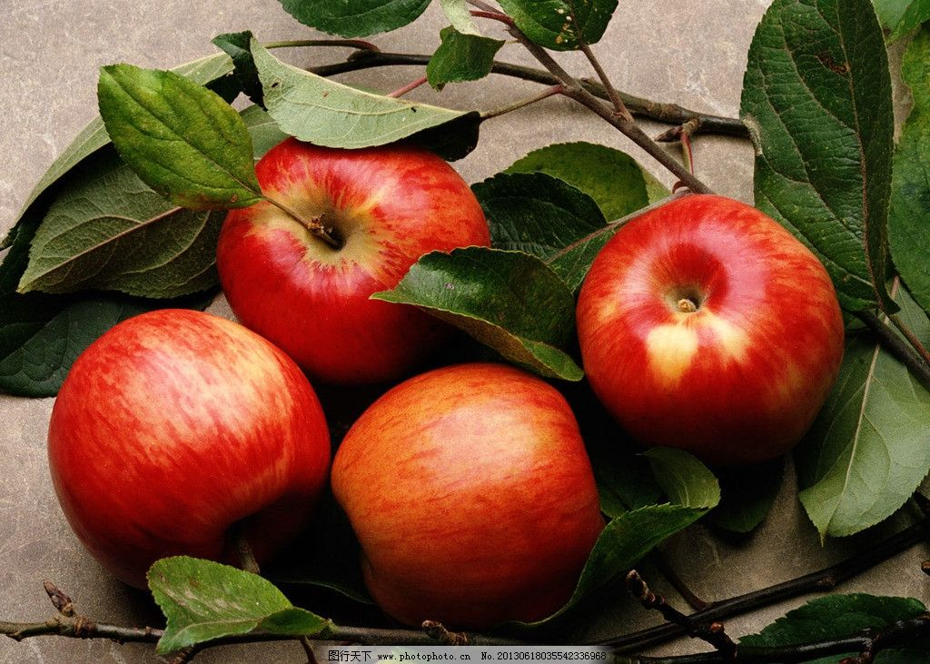 苹果 水果 可口 甜蜜 树叶 唯美 个性 写真 生物世界 摄影 jpg