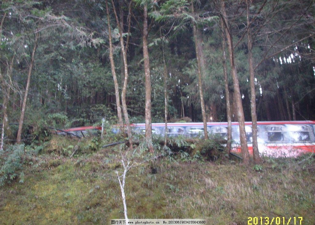 小火车 森林 山坡 杂草 天空 旅游摄影