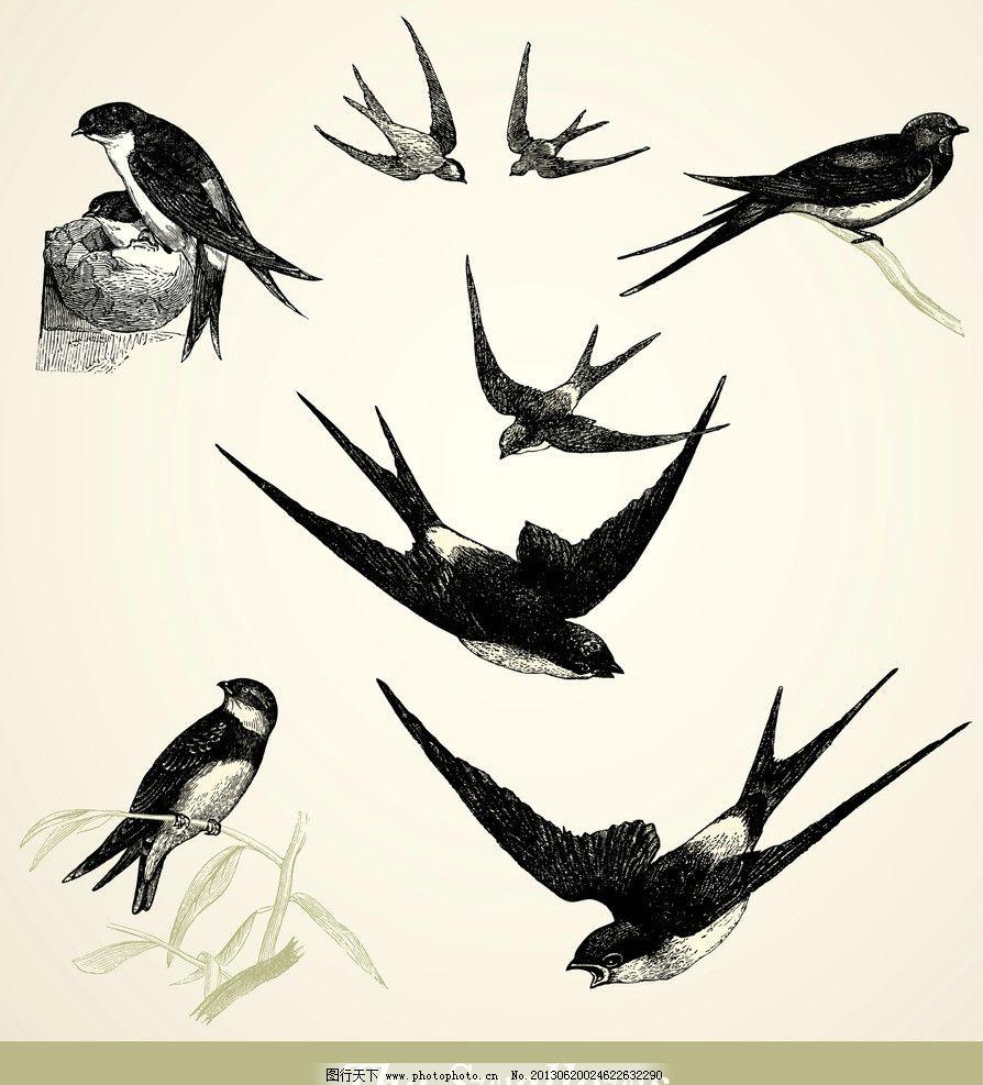 国画燕子绘画步骤