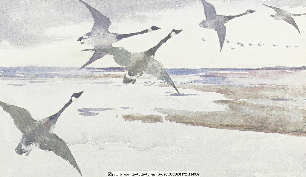 候鸟油画 翱翔 壁画 大雁 飞鸟 风光 风景 风景画 候鸟油画设计素材